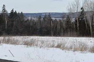Photo 6: 414 Old Post Road in Clementsport: 400-Annapolis County Vacant Land for sale (Annapolis Valley)  : MLS®# 202102794