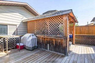 Photo 33: 1244 Berkley Drive NW in Calgary: Beddington Heights Detached for sale : MLS®# A1118414