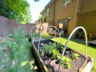 """Photo 17: 405 CARDIFF Way in Port Moody: College Park PM Townhouse for sale in """"EASTHILL"""" : MLS®# R2598640"""