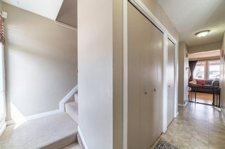 Photo 12: 49 Templeson Crescent NE in Calgary: Temple Detached for sale : MLS®# A1089563