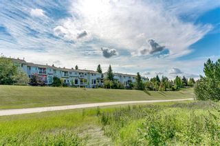 Photo 47: 19 8020 SILVER SPRINGS Road NW in Calgary: Silver Springs Row/Townhouse for sale : MLS®# C4261460