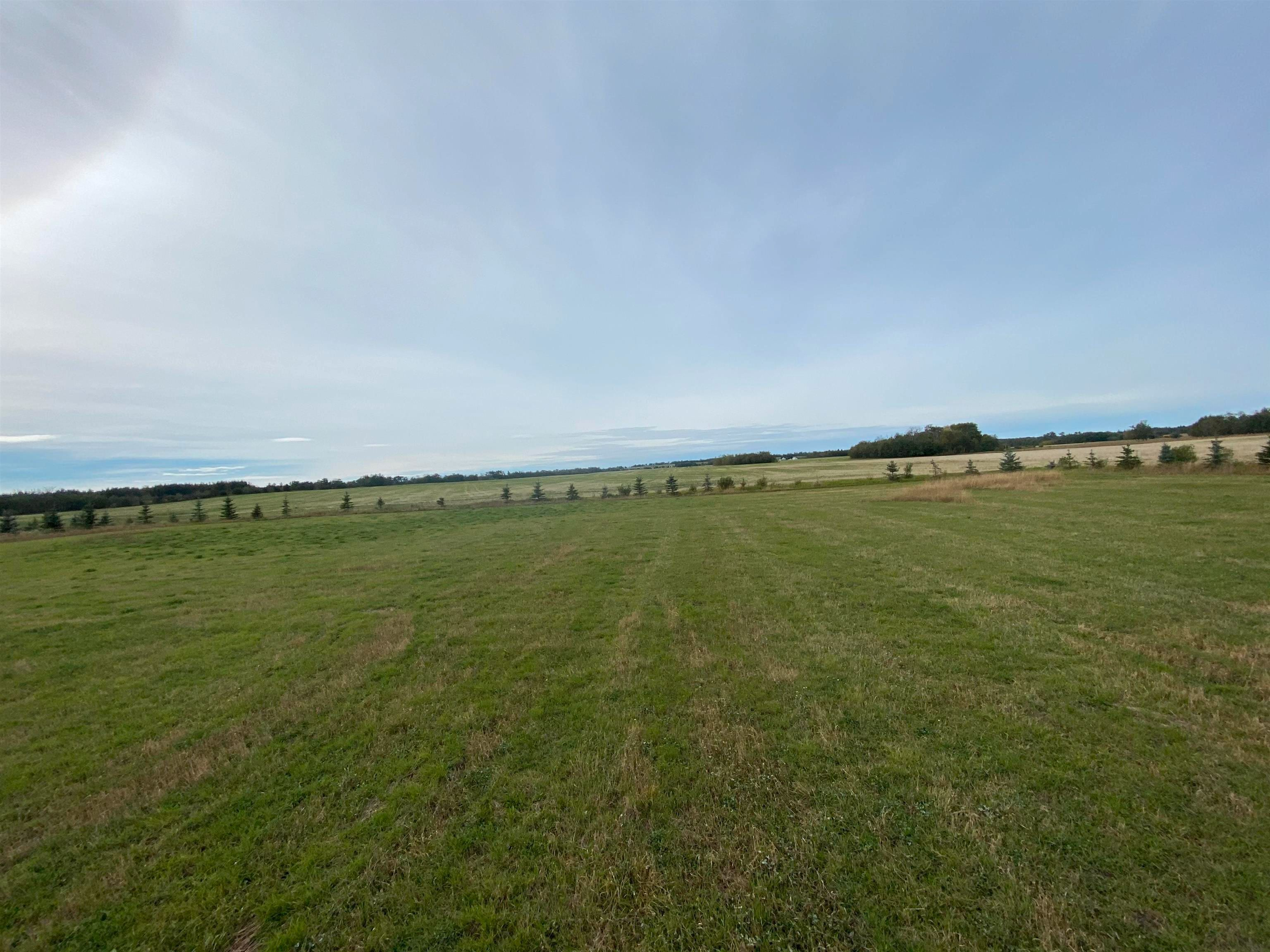 Main Photo: TWP RD 583 Range Rd 271: Rural Westlock County Rural Land/Vacant Lot for sale : MLS®# E4218433