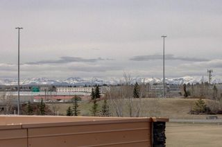 Photo 32: 4908 22 ST SW in Calgary: Altadore Detached for sale : MLS®# C4294474
