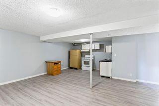 Photo 18: 547 Whiteland Drive NE in Calgary: Whitehorn Semi Detached for sale : MLS®# A1124147