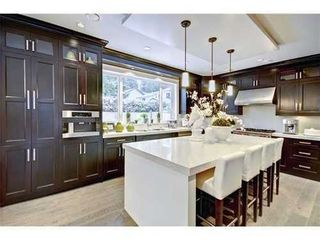 Photo 3: 3959 LEWISTER Road in North Vancouver: Home for sale : MLS®# V978405