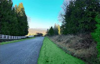 Photo 1: 29770 GIBSON Avenue: Land for sale in Abbotsford: MLS®# R2591869