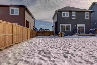 Photo 34: 29 MIST MOUNTAIN Rise: Okotoks Detached for sale : MLS®# C4232951