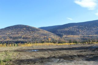 Photo 3: 22 GRAYLING Crescent in Mackenzie: Mackenzie -Town Land for sale (Mackenzie (Zone 69))  : MLS®# R2506487