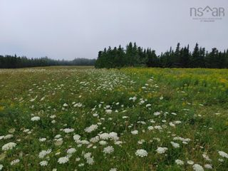 Photo 3: Lot Nollett Beckwith Road in Ogilvie: 404-Kings County Vacant Land for sale (Annapolis Valley)  : MLS®# 202120227