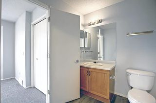 Photo 27: 38 Coverdale Way NE in Calgary: Coventry Hills Detached for sale : MLS®# A1145494