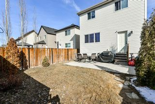 Photo 29: 368 Copperstone Grove SE in Calgary: Copperfield Detached for sale : MLS®# A1084399
