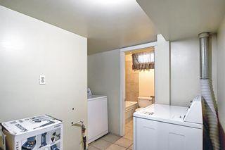 Photo 35: 23 Castlefall Way NE in Calgary: Castleridge Detached for sale : MLS®# A1141276