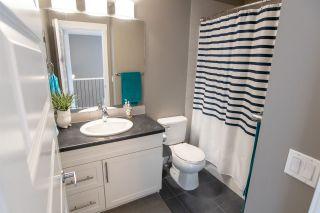 Photo 7: 20634 97A Avenue in Edmonton: Zone 58 House for sale : MLS®# E4225094