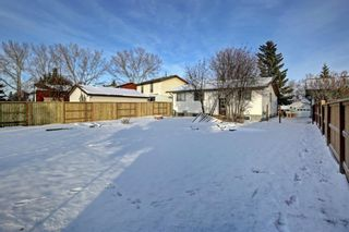 Photo 29: 132 Summerfield Close SW: Airdrie Detached for sale : MLS®# A1049034