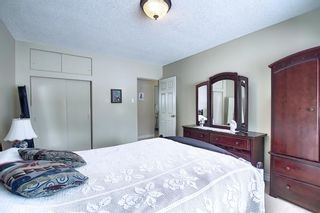 Photo 22: 63 Cromwell Avenue NW in Calgary: Collingwood Detached for sale : MLS®# A1060725