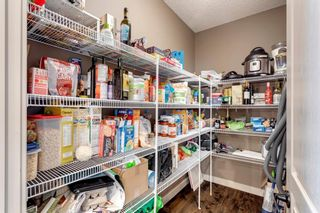 Photo 15: 92 COPPERPOND Mews SE in Calgary: Copperfield Detached for sale : MLS®# A1084015