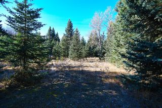 Photo 32: 20.02 Acres +/- NW of Cochrane in Rural Rocky View County: Rural Rocky View MD Land for sale : MLS®# A1065950