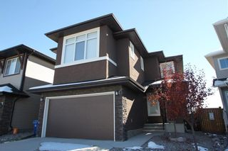 Photo 1: 313 WALDEN Square SE in Calgary: Walden Detached for sale : MLS®# C4206498