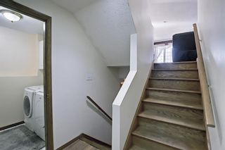 Photo 27: 187 Bridlewood Circle SW in Calgary: Bridlewood Detached for sale : MLS®# A1110273