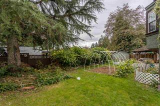 Photo 32: 32094 HOLIDAY Avenue in Mission: Mission BC House for sale : MLS®# R2507161
