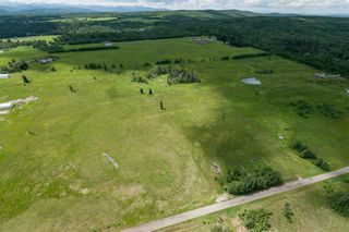 Photo 1: 256 Street W Near Priddis: Rural Foothills County Land for sale : MLS®# A1057790