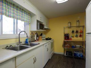 Photo 21: 425 Crescent Road E in Portage la Prairie: House for sale : MLS®# 202101949