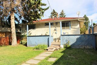 Photo 23: 254 Dovercliffe Way SE in Calgary: Dover Detached for sale : MLS®# A1146227