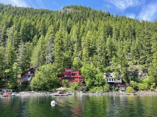 Photo 50: 25 Lime Cliffs Beach, in Sicamous: House for sale : MLS®# 10232584