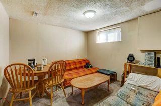 Photo 22: 20 Castleridge Close NE in Calgary: Castleridge Detached for sale : MLS®# A1113165