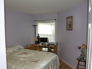 Photo 43: 307 19121 FORD ROAD in EDGEFORD MANOR: Home for sale : MLS®# R2009925