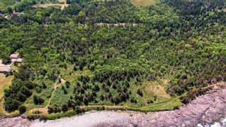 Photo 8: Lot 3 Hampton Mountain Road in Hampton: 400-Annapolis County Vacant Land for sale (Annapolis Valley)  : MLS®# 202101569