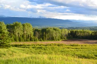 """Photo 14: DECEPTION LAKE FOREST SERVICE ROAD: Telkwa Land for sale in """"WOODMERE"""" (Smithers And Area (Zone 54))  : MLS®# R2398092"""