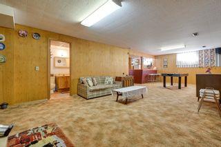 Photo 16: 3617 113 Avenue in Edmonton: Zone 23 House for sale : MLS®# E4261737
