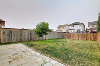Photo 43: 159 Copperstone Grove SE in Calgary: Copperfield Detached for sale : MLS®# A1138819