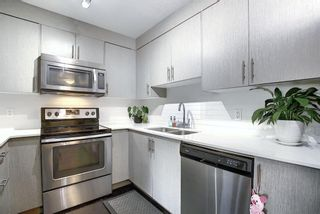 Photo 3: 3205 302 Skyview Ranch Drive NE in Calgary: Skyview Ranch Apartment for sale : MLS®# A1077085