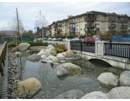 """Main Photo: 401 500 KLAHANIE Drive in Port_Moody: Port Moody Centre Condo for sale in """"THE TIDES"""" (Port Moody)  : MLS®# V739637"""