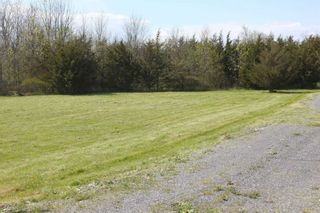 Photo 9: Pt Lot County Rd 15 in Prince Edward County: Sophiasburgh Property for sale : MLS®# X5225157
