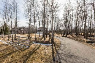 Photo 5: 90 47411 Rge Rd 14: Rural Leduc County House for sale : MLS®# E4237733