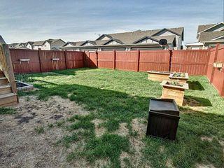 Photo 20: 17812 75 Street in Edmonton: Zone 28 House for sale : MLS®# E4246785