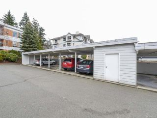 Photo 31: 309 1686 Balmoral Ave in COMOX: CV Comox (Town of) Condo for sale (Comox Valley)  : MLS®# 833200