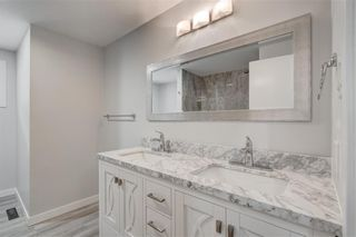 Photo 18: 832 Macleay Road NE in Calgary: Mayland Heights Detached for sale : MLS®# A1125875