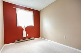 Photo 17: 162 Royal Avenue in Winnipeg: Scotia Heights Residential for sale (4D)  : MLS®# 202116390