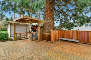 Photo 26: 1755 Mortimer St in : SE Mt Tolmie House for sale (Saanich East)  : MLS®# 867577