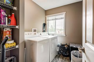 Photo 13: 8516 Bowness Road NW in Calgary: Bowness Detached for sale : MLS®# A1129149