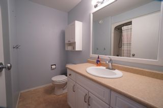 Photo 16: 19 Cadham Bay in Portage la Prairie: House for sale : MLS®# 202115588