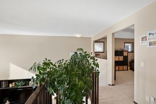 Photo 29: 124 Tremblant Way SW in Calgary: Springbank Hill Detached for sale : MLS®# A1088051