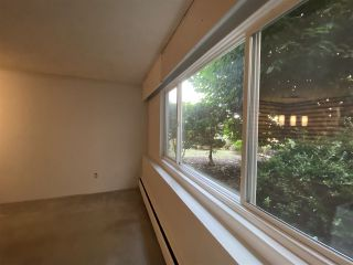 """Photo 15: 114 11816 88 Avenue in Delta: Annieville Condo for sale in """"SUN GOD VILLA"""" (N. Delta)  : MLS®# R2547737"""