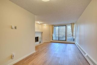 Photo 18: 201 2425 90 Avenue SW in Calgary: Palliser Apartment for sale : MLS®# A1052664
