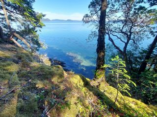 Photo 9: 9844 Canal Rd in : GI Pender Island House for sale (Gulf Islands)  : MLS®# 884964