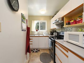 Photo 7: 1 1786 Albert Ave in Victoria: Vi Jubilee Row/Townhouse for sale : MLS®# 875448